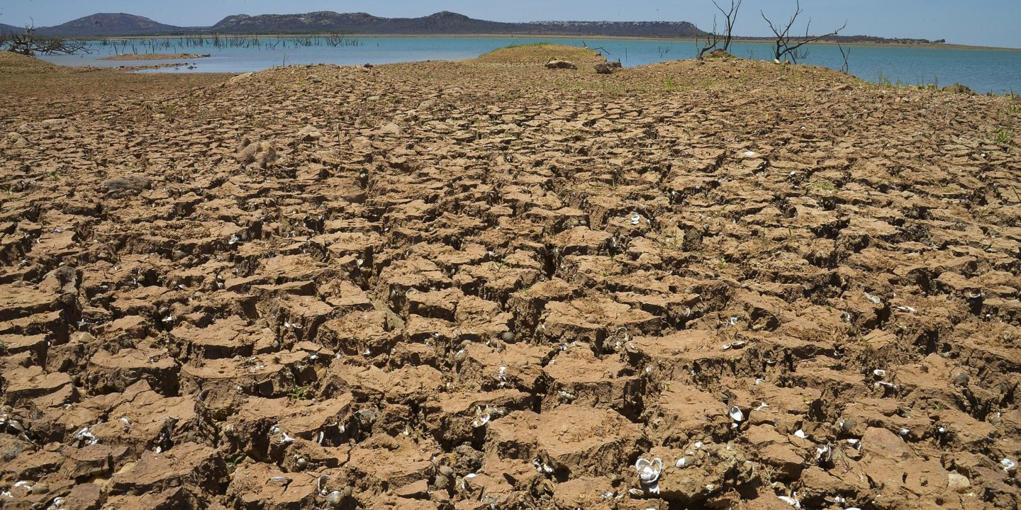 UN desertification COP Delhi drought Brazil