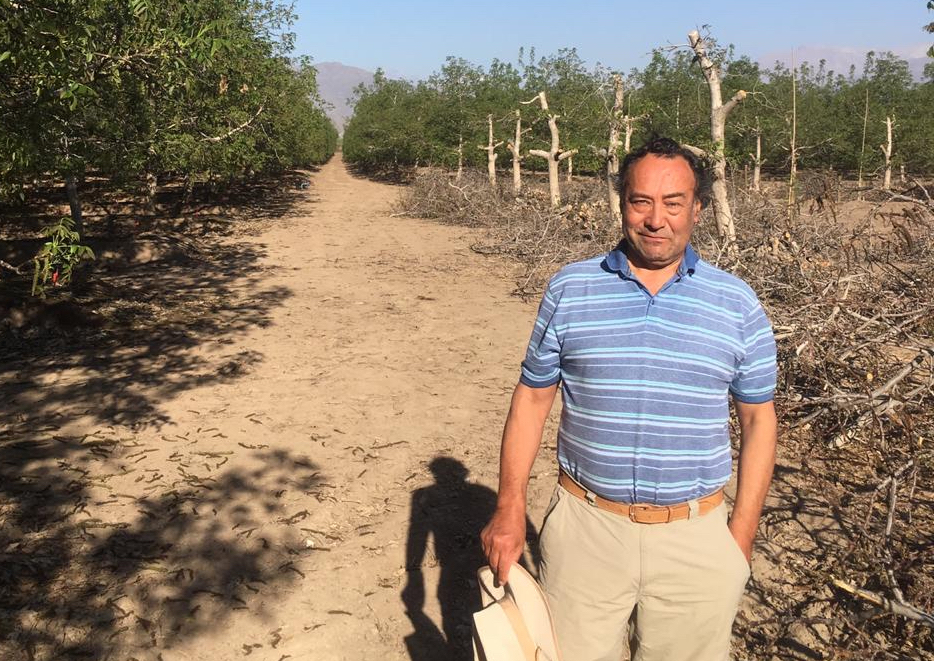 Chile's drought has hit walnut farmers like Fernando González