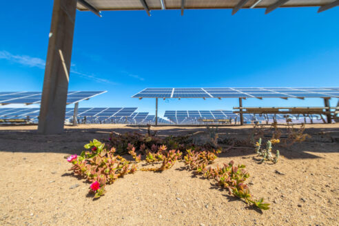 Solar Energy Power Plant, Atacama Chile