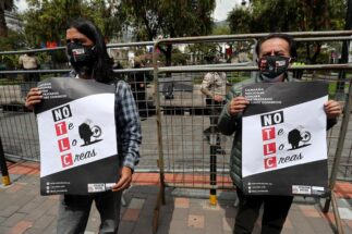 Ecuador elections protests DFC China